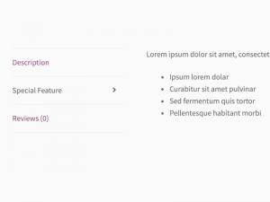 WooCommerce Product Tabs WordPress Plugin